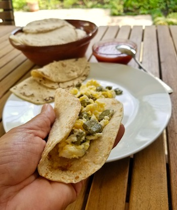 Nopalitos Con Huevo – Cactus With Egg Taco
